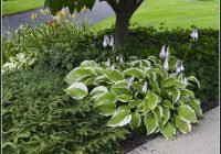 Pflanzen Garten Nach Feng Shui