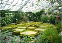 Potsdam Botanischer Garten