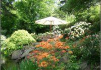 Rote Ameisen Im Garten Pflanzen