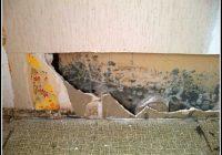 Schimmel Im Wohnzimmer Mietminderung