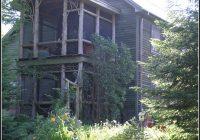 Sichtschutz Pflanzen Balkon Kbel