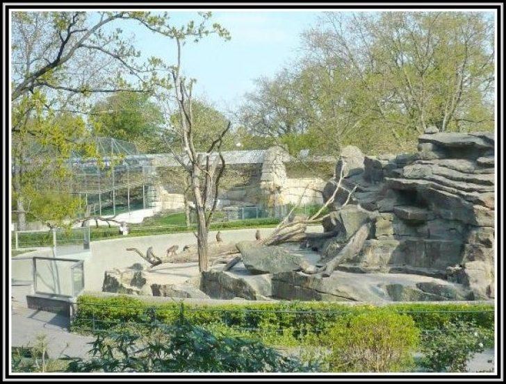 Permalink to Zoologischer Garten Berlin Kino